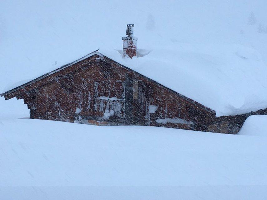 snowfall in Grindelwald
