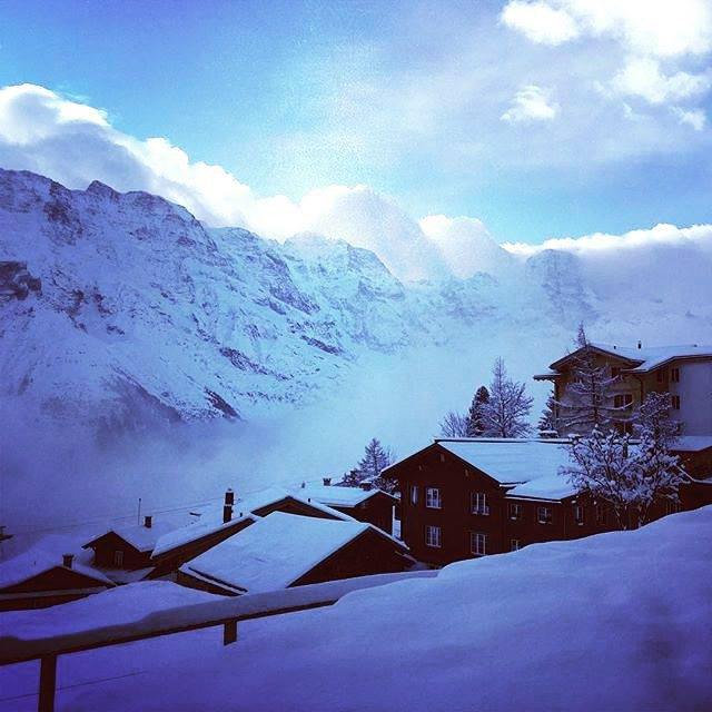 Fresh snow in Murren