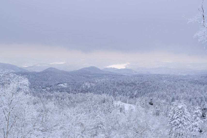 landscape kiroro japan trees snow
