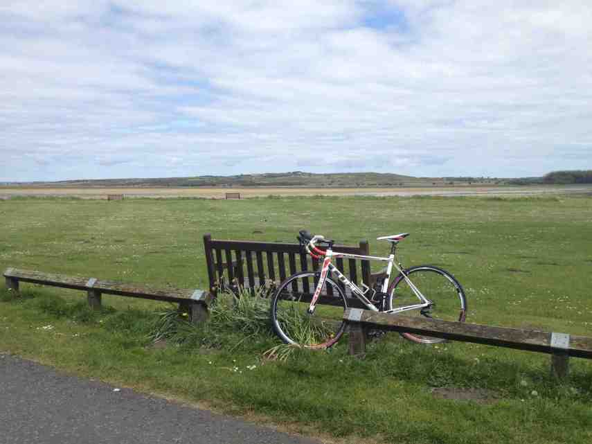 summer-bike-copy